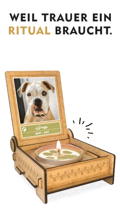 Photo of DESOLATION LIGHT for DOGS | a keepsake of your best friend