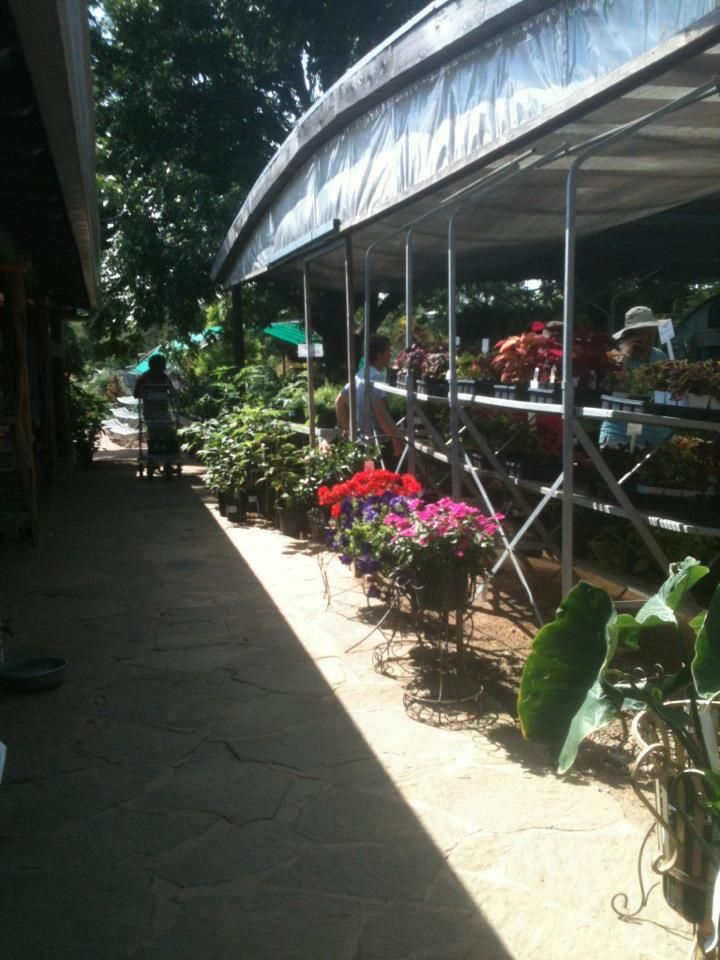 The Natural Gardener Organic Gardening Headquarters Austin Tx Such A Fun Place To Visit