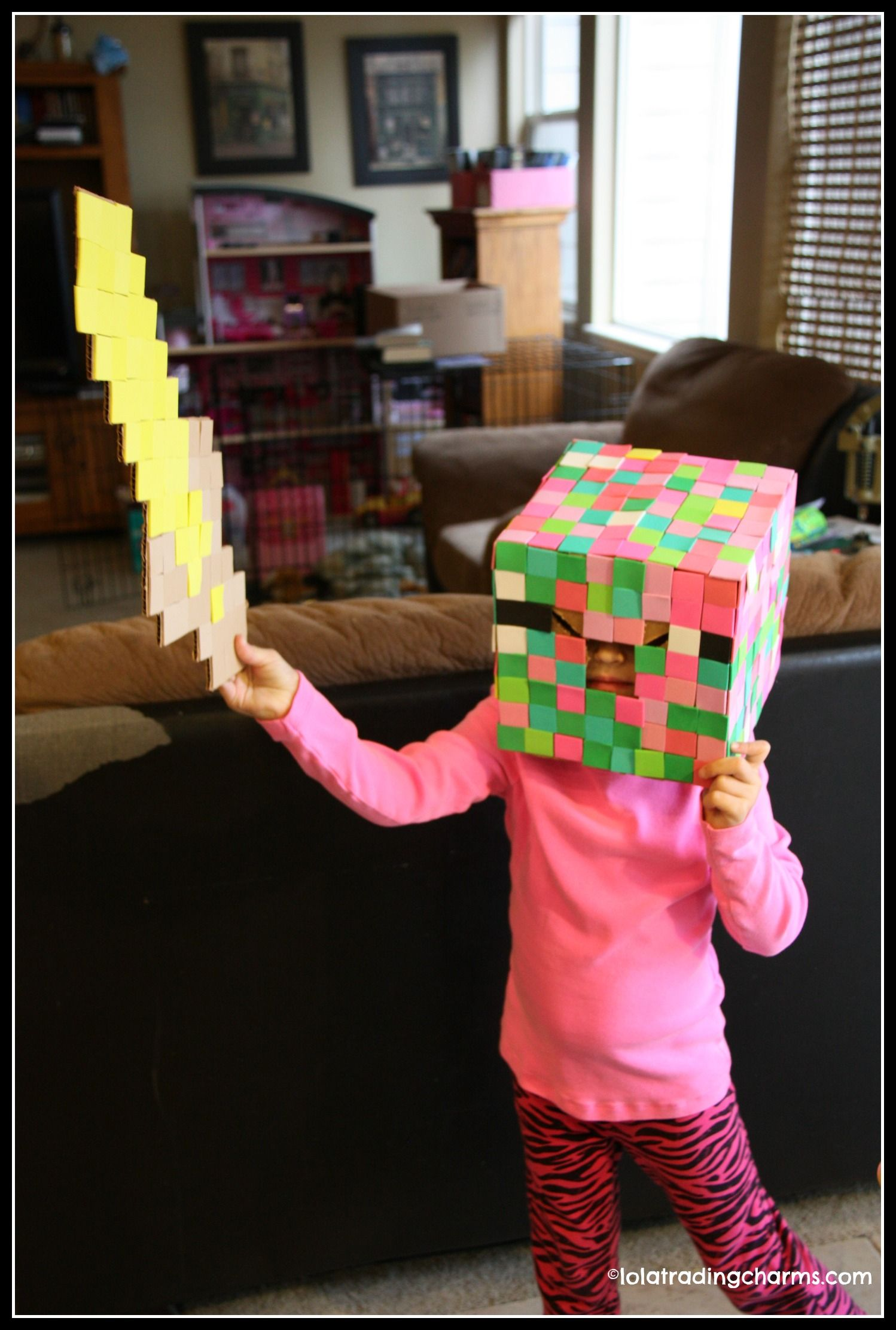 3 Easy Diy Storage Ideas For Small Kitchen: Super Easy DIY Minecraft Halloween Costume For Kids. My