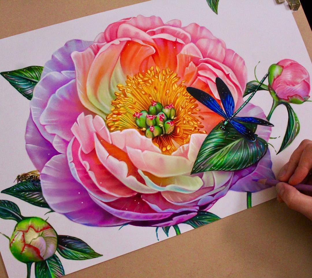 Perfect color pencil drawing of Flowers motive done by