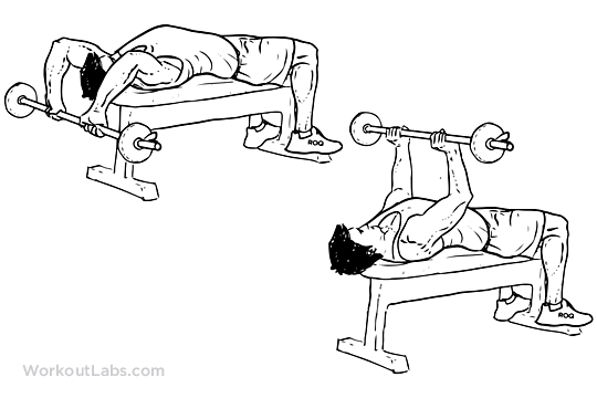 Barbell Pullover / Lying Chest Overhead Extension | Chest & Abs ...