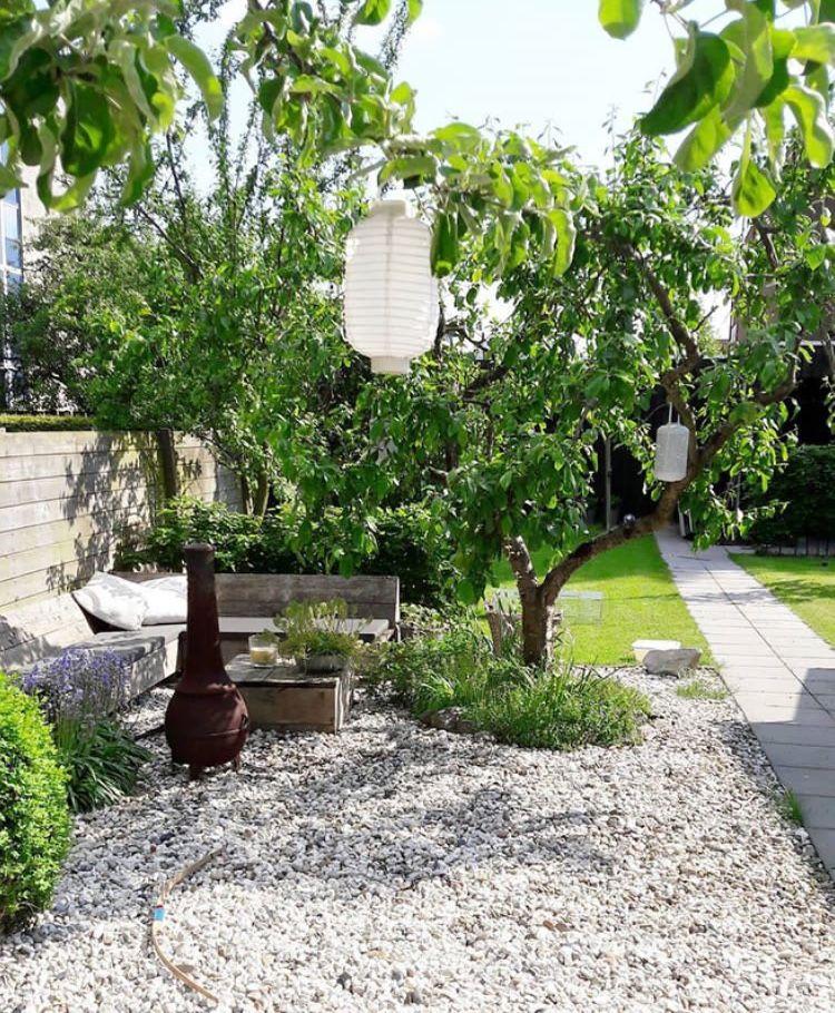Vanwini Urban Gardening Pinterest Gardens, Urban gardening and