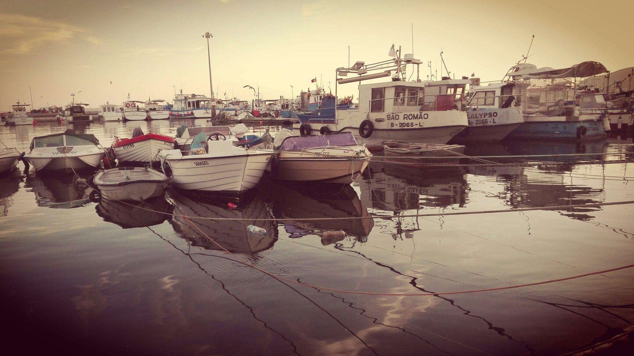 Setúbal - Doca de Pesca , Baía dos Golfinhos