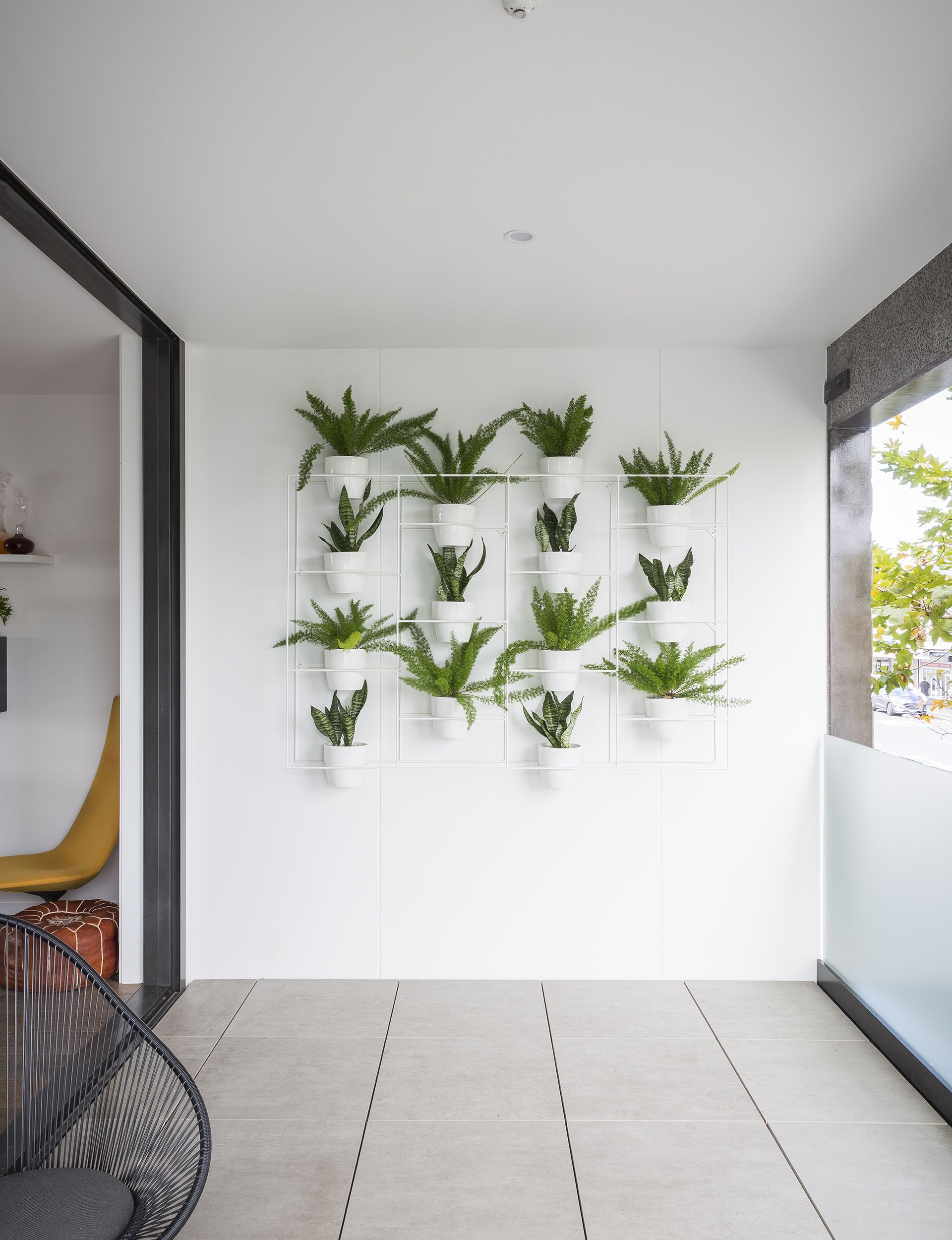 How indoor plants transformed this inner city apartment Indoor apartment plants