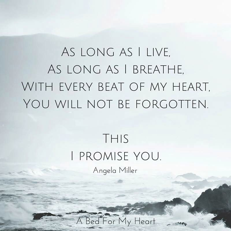 Will Be Missing You Quotes: Missing My Mom. You Will Not Be Forgotten...this I Promise