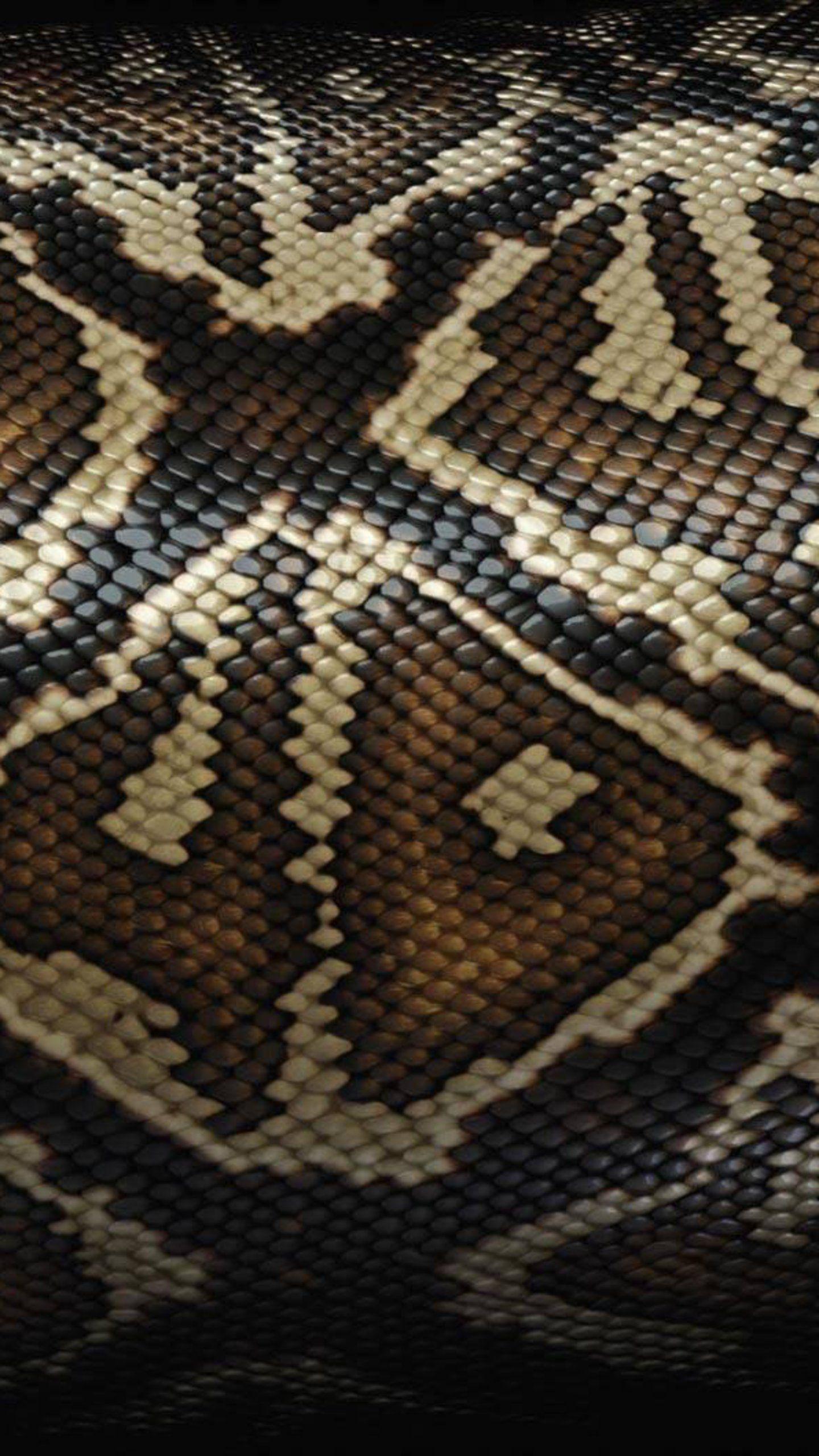 MuchaTseBle Tapety, Zwierzęta, Wąż