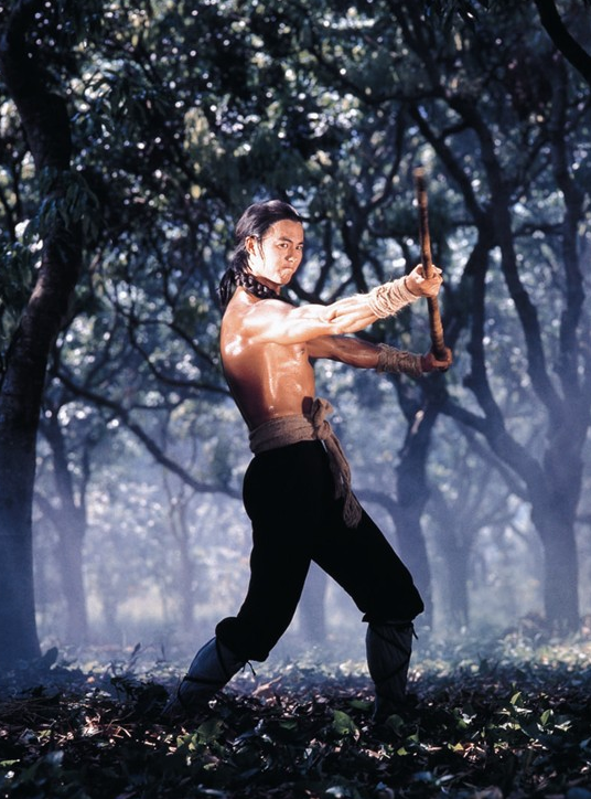 Ti Lung Five Shaolin Masters