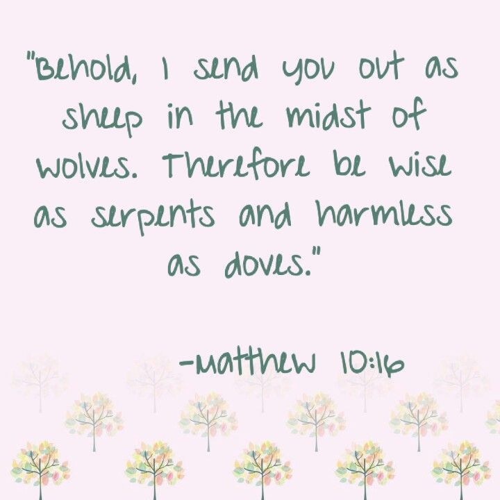Resultado de imagen de Matt. 10:16