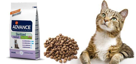 Hablamos Del Nuevo Advance Cat Sterilized Hairball Alimentos Para Mascotas Gatos Ahorrar Dinero