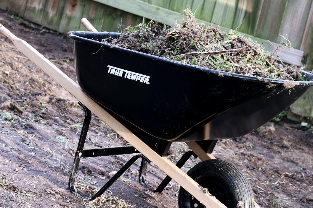 How to start a garden gardening for beginners easy