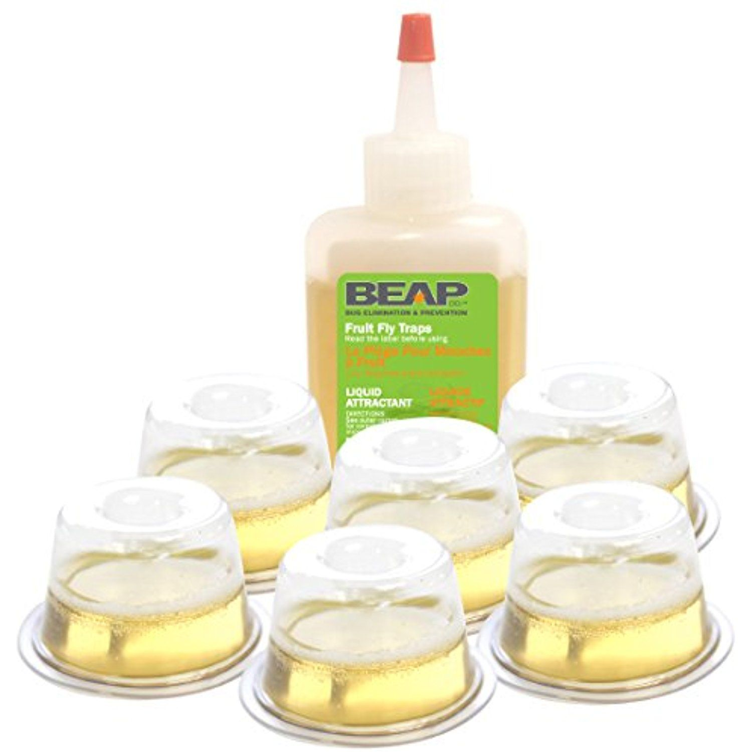Beapco 6 Pack Drop Ins Fruit Fly Traps * Want To Know