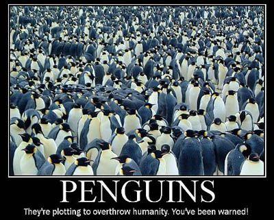 penguin motivational poster - Google Search | Demotivational ...