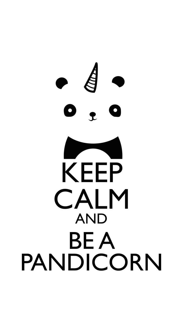 Panda Quotes Pinkayla Green On Wallpaper  Pinterest  Calming