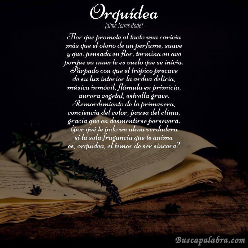Poema Orquidea De Jaime Torres Bodet Con Fondo De Libro Poemas Jorge Debravo Poesia