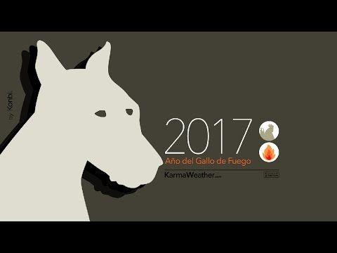 Horóscopo chino 2017 del Perro - Tarot del Amor