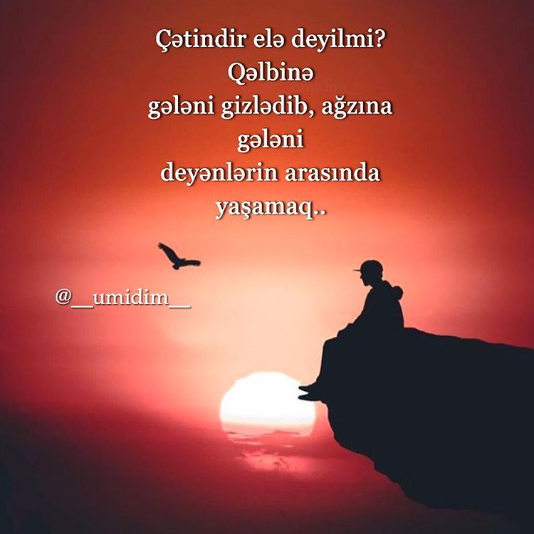 Instagram Da Umidim Official Page Cətindir Umidim Coxlu Comment Və Kayd Edək Səhifəmiz Duzəlsin Sehifəmizə Buyrun Um Movies Poster Movie Posters