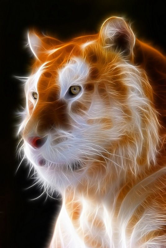 Fractalius In 2020 Big Cats Art Lion Art Tiger Art