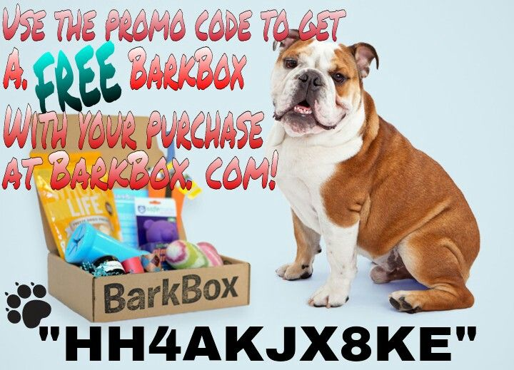 BarkBox code for FREE box + shipping with your purchase