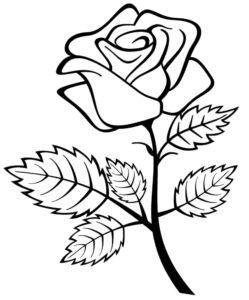 kostenlose druckbare rosen malvorlagen für kinder in 2020 mit bildern   blumenzeichnung