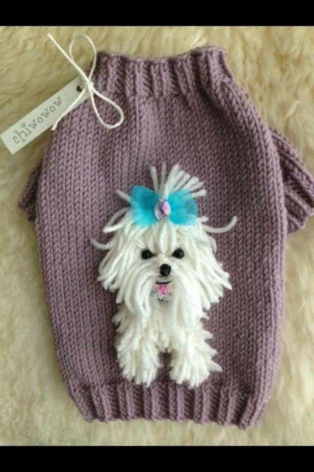 Pin de Carmen Balasa en idei | Pinterest | Mascotas, Tejido y Ropa ...