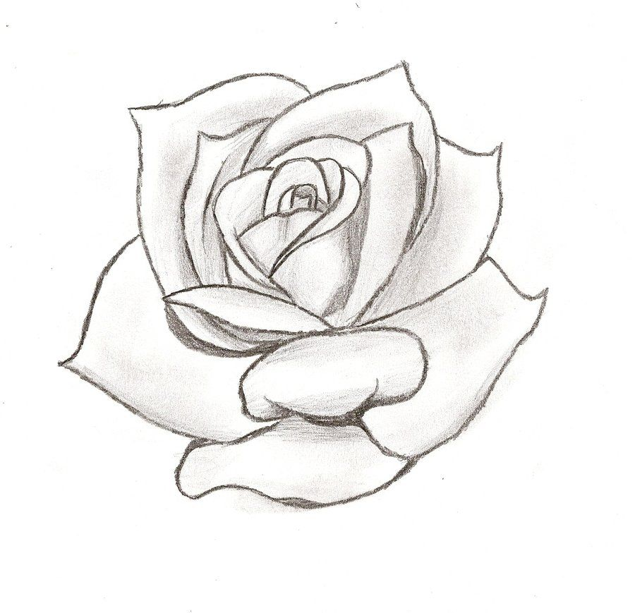 Flower With Stem Outline Template Clip Art Library In 2020 Rose Tattoo Stencil Roses Drawing Rose Stencil