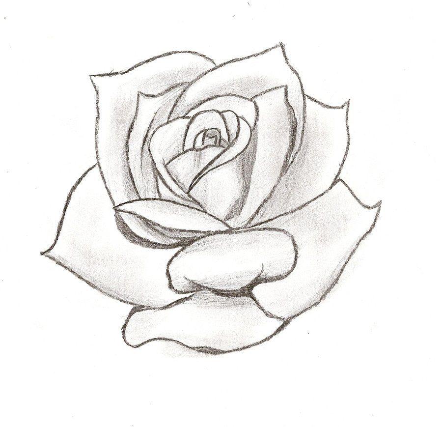 Rose Stencil Cake Ideas and Designs | Rosen | Pinterest ...