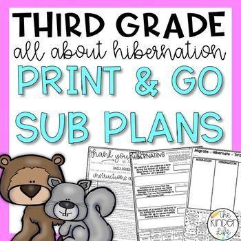 Third Grade Hibernation Emergency Sub Plans