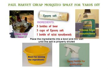 Homemade Paul Harvey Mosquito Spray For Yard Mosquito Yard Spray
