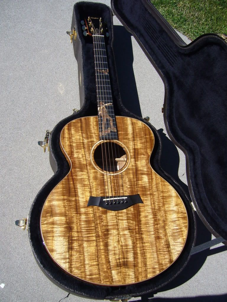 taylor custom jdcm koa jumbo guitar my want list things that i want and things i 39 ve had in. Black Bedroom Furniture Sets. Home Design Ideas