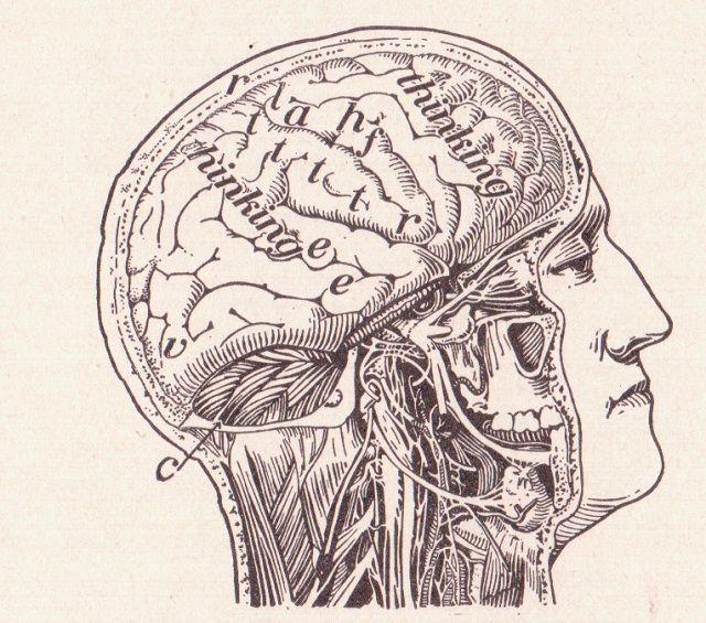 Excelencia Innovación | 35 trucos psicológicos para ayudarle a aprender mejor