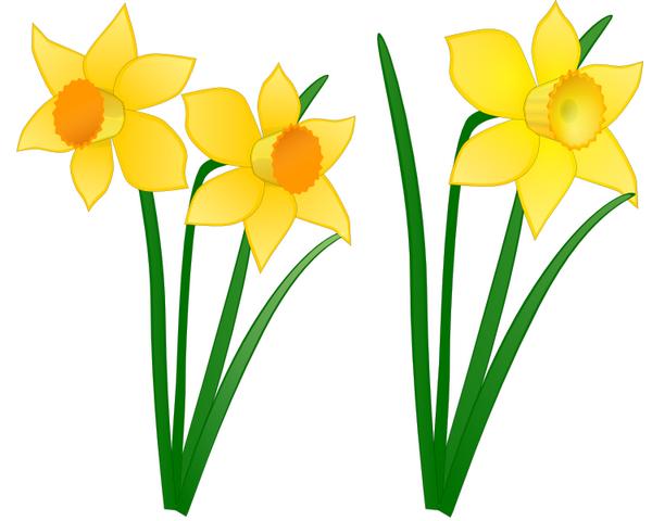 Fleurs De Printemps Dessin Couleur | Fleurs printemps
