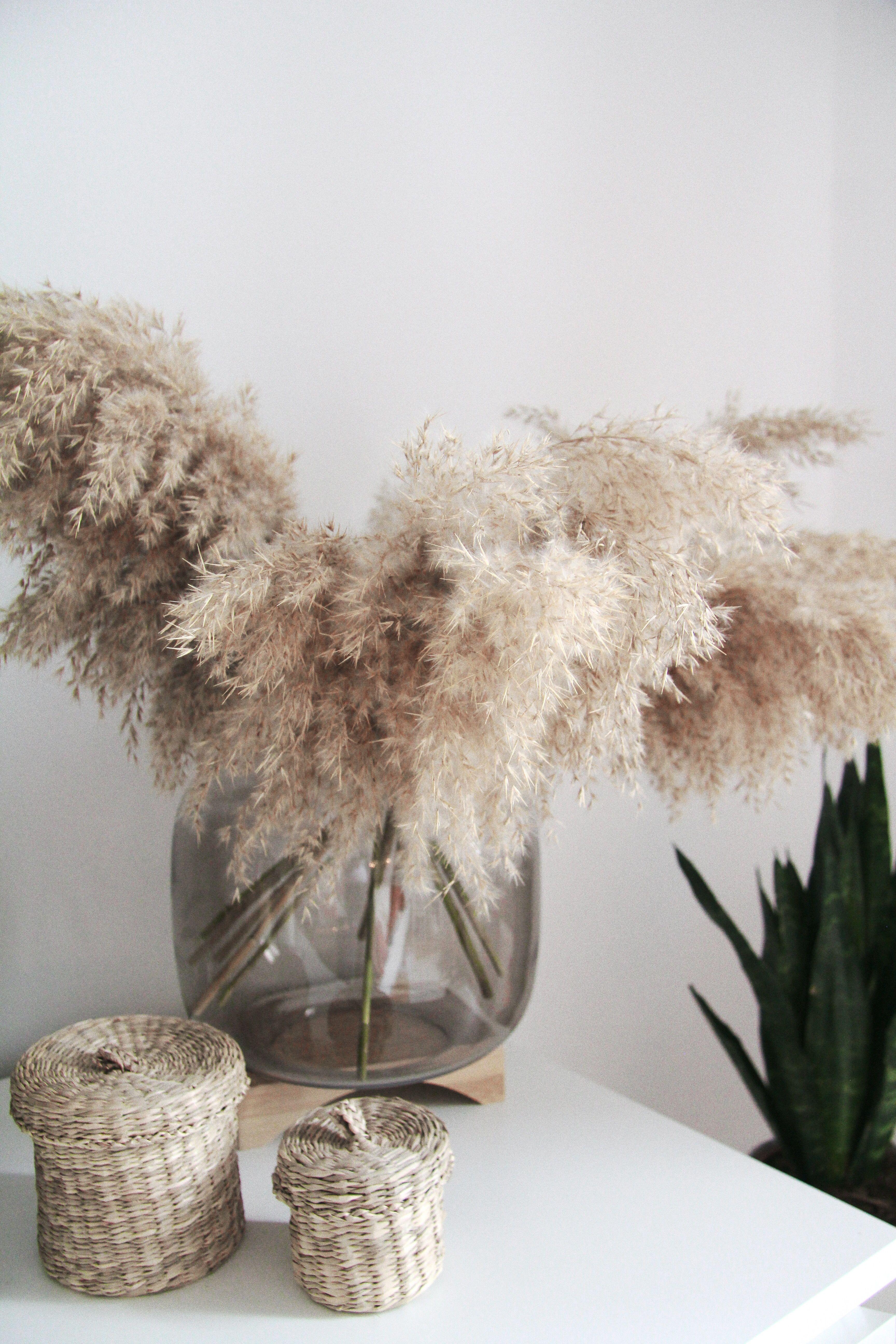 Inspiration Pampasgras Als Deko Deko Blumen Gestecke