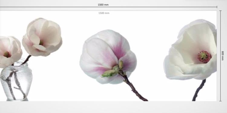 Kuchenruckwand Aus Glas Weiss Magnolie Blume Modern Wohnideen Kuche