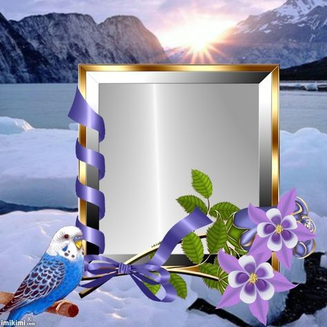 The Beautiful Nature Flower Frame Photo Frame Design Foto Frame
