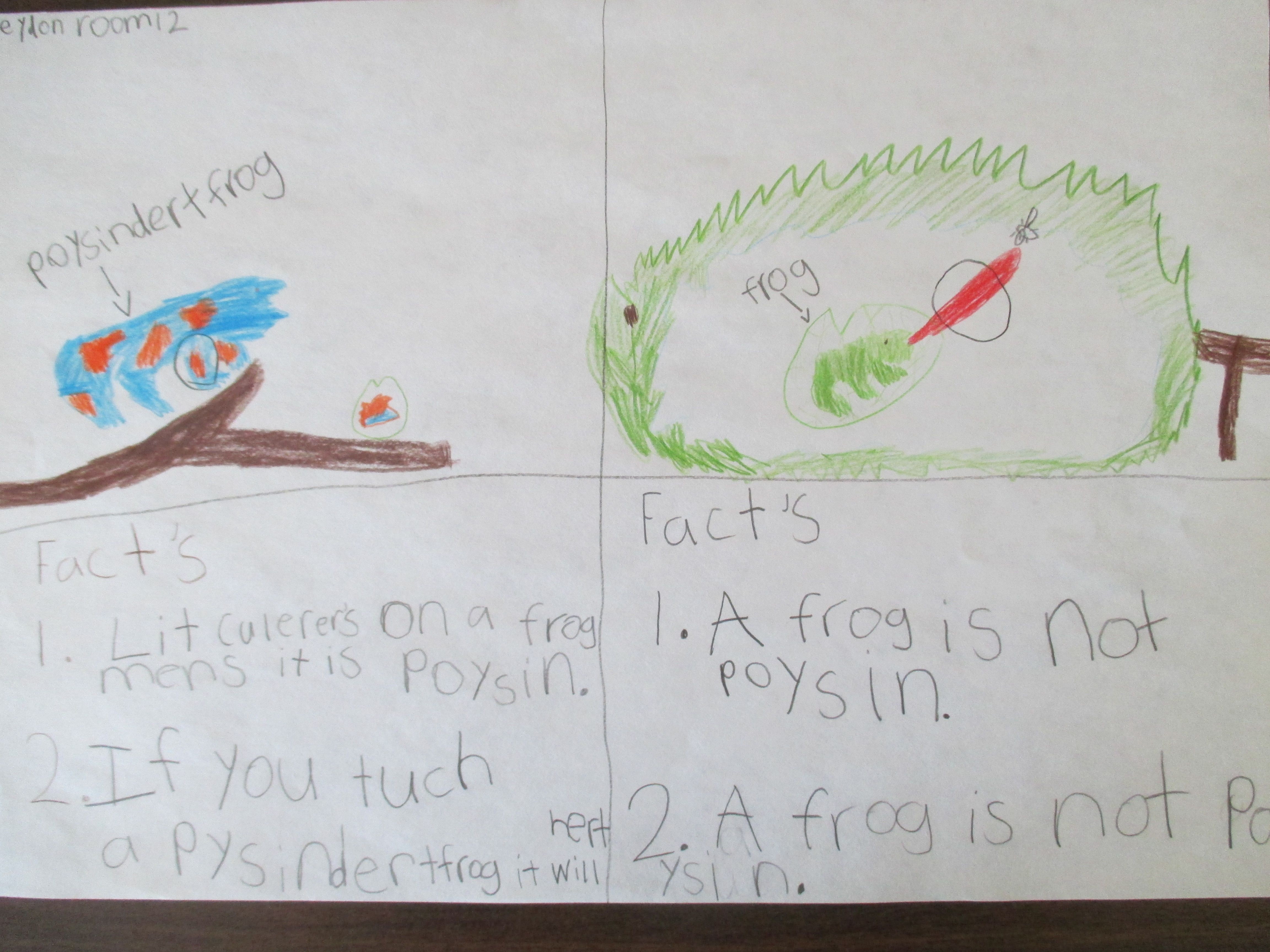 Nonfiction Text Feature Frog Fact Boxes Based On Frog Or