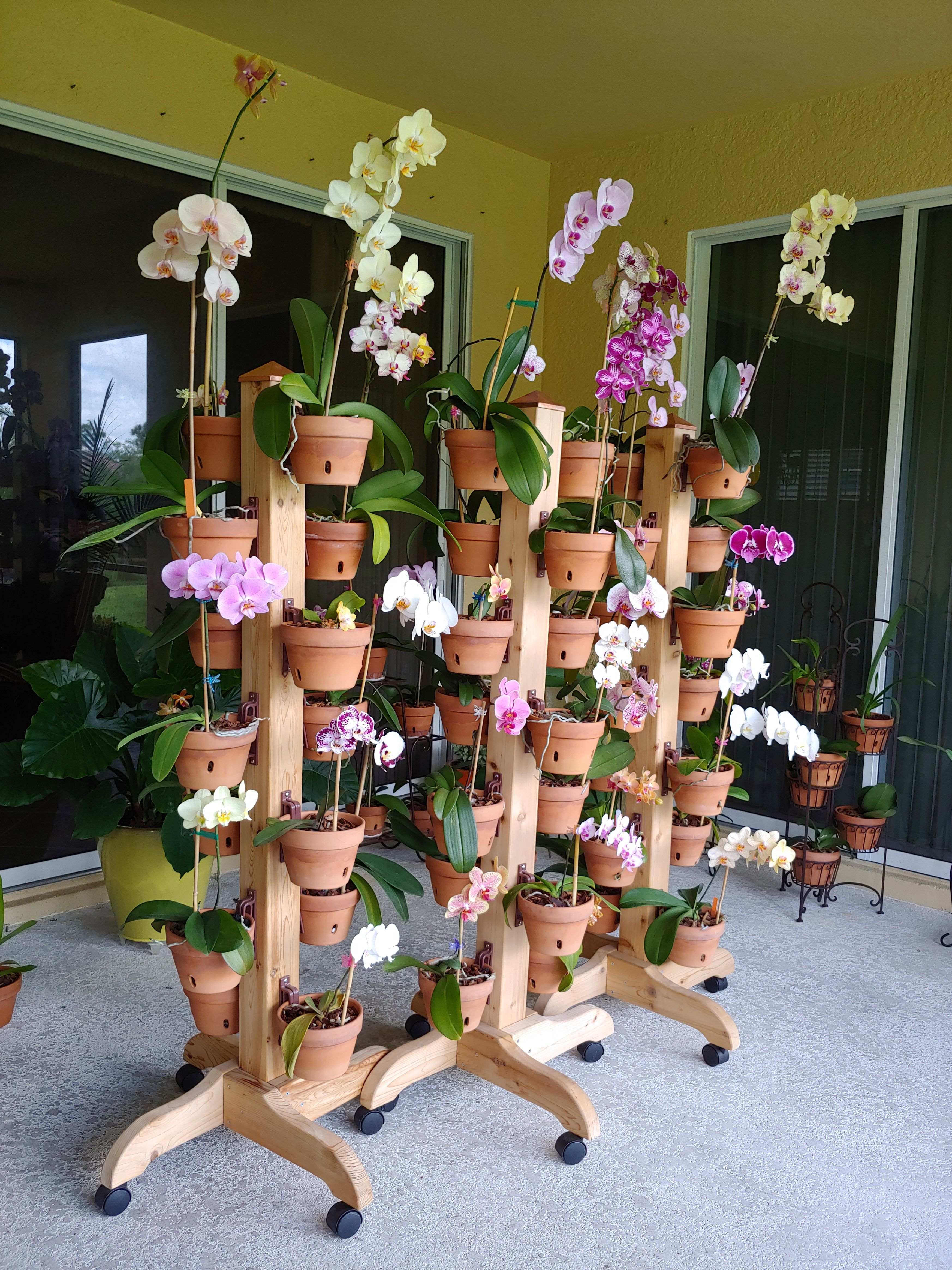 Need More Space For Your Orchids Hangapot Solid Cedar Plant Stands Come In 3 And 5 With Legs Wheels And Award Wi Cedar Plant Flower Pot Hanger Plant Stand