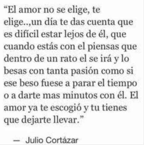 El amor no se elije