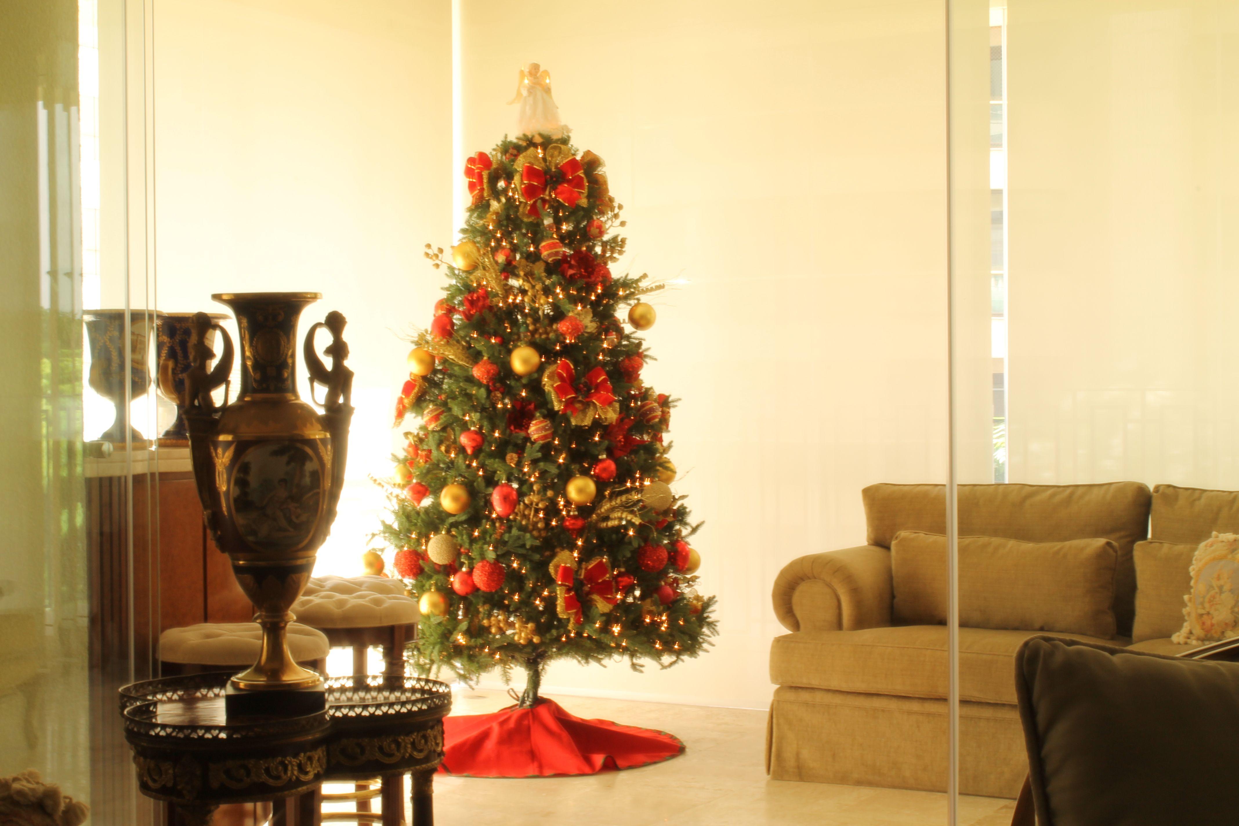Regina Zema. Montagem e Desmontagem de árvore de Natal
