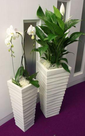 Textured stack displays in an indoor office setting with live white textured stack displays in an indoor office setting with live white flowering spathifyllum plants see mightylinksfo