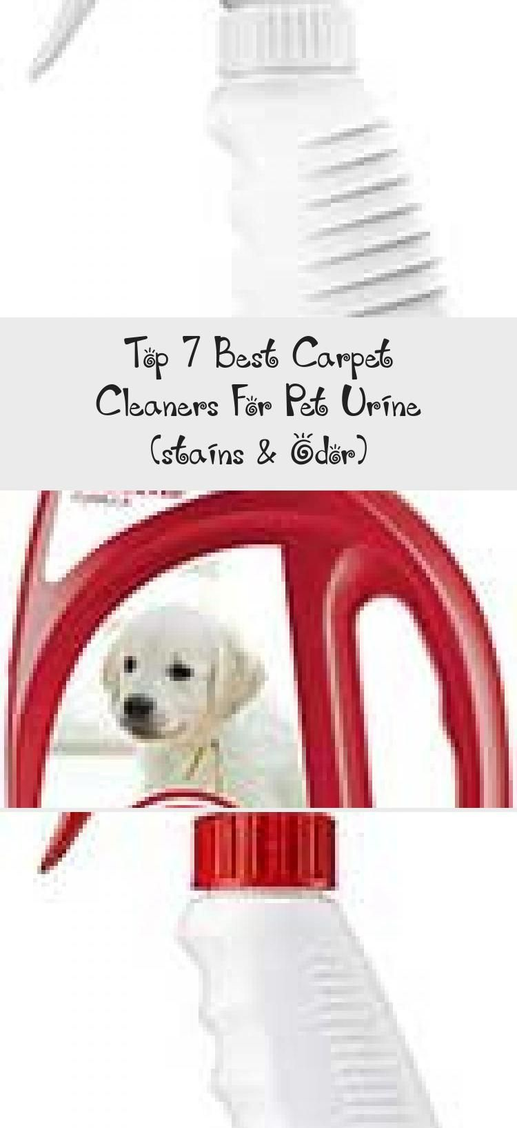 Top 7 Best Carpet Cleaners For Pet Urine Stains Odor Dogstains Petcleaner Dogbehavior Carpetcleanerprodu In 2020 Carpet Cleaner Solution Pet Urine Pet Cleaner