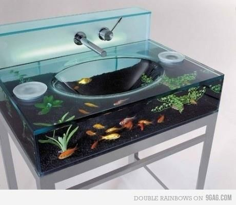love this sink?????but how do you feed the fish??