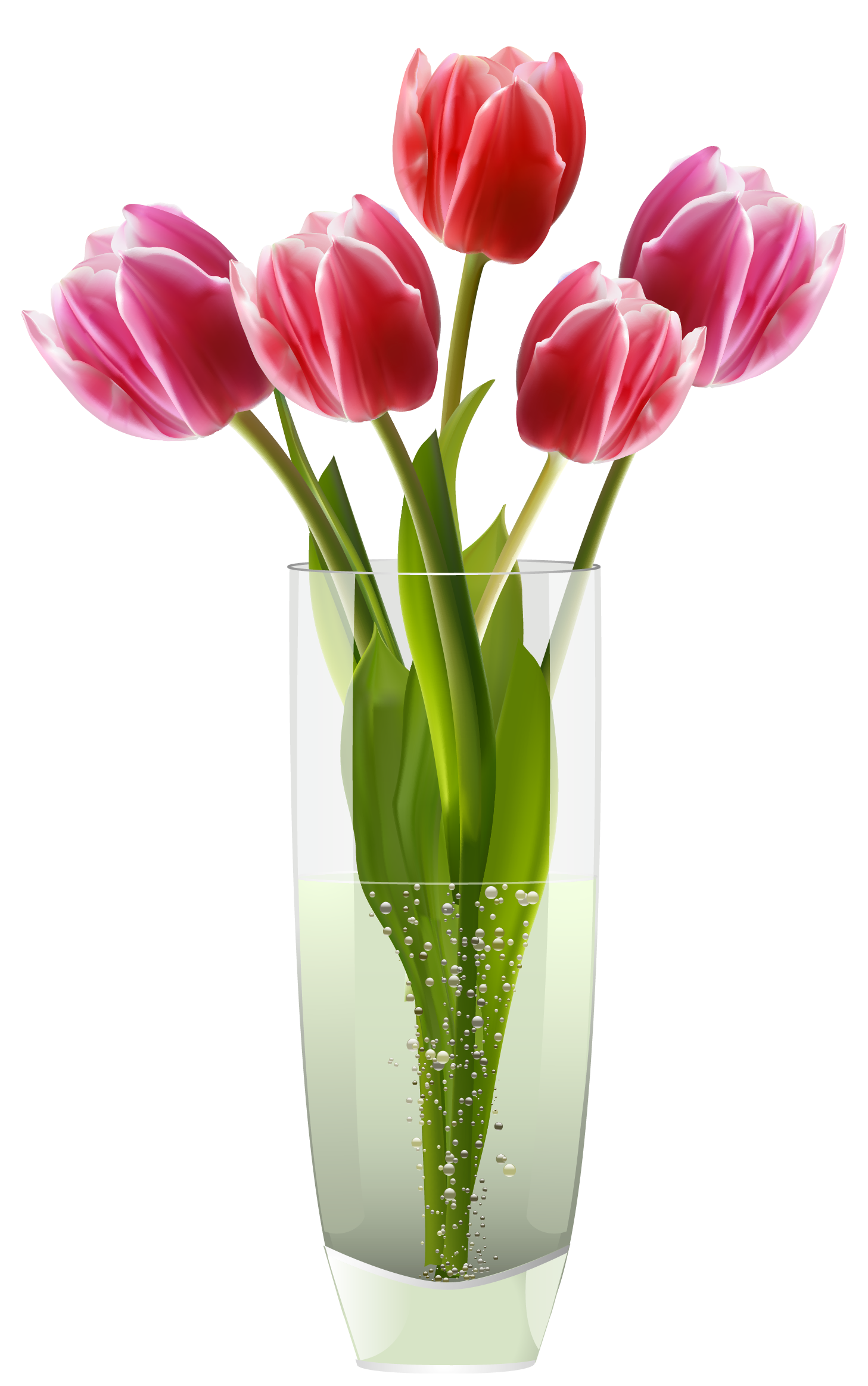 Flowers in vase google suche flowers pinterest red tulips red tulips reviewsmspy