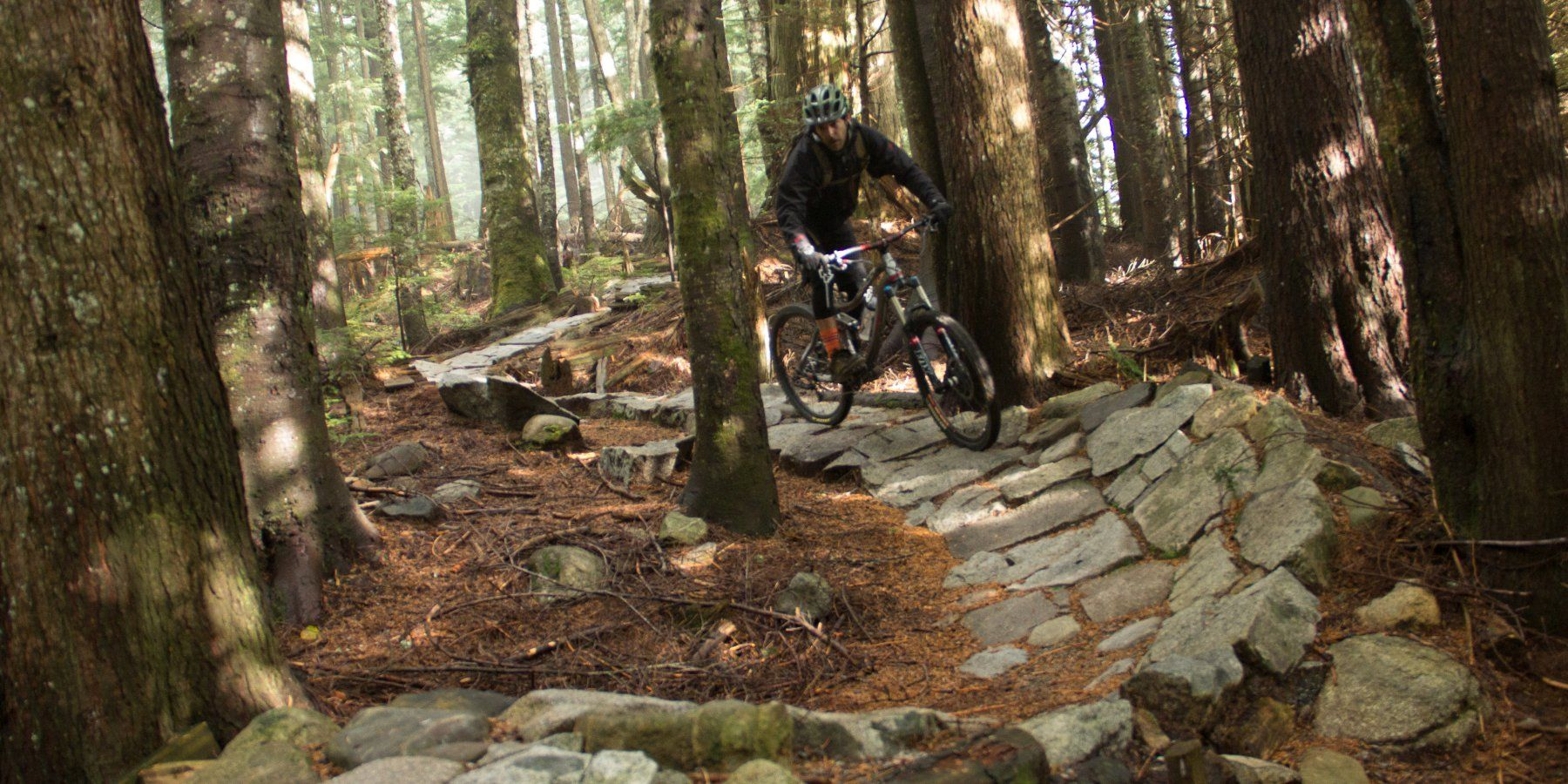 The Trail Has Great Flow Up Top Mount Seymour Mountain Bike