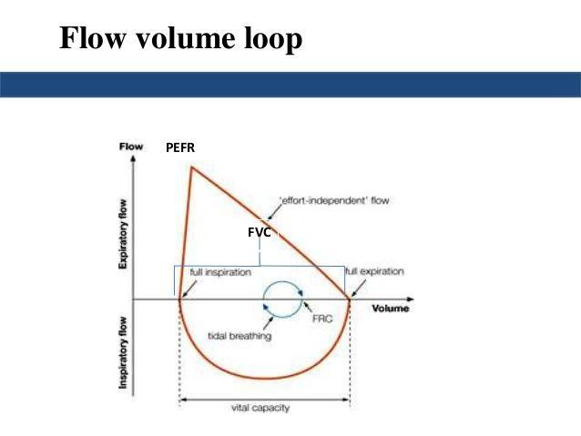 Image Result For Maximal Effort Flow Volume Curve  Medicine