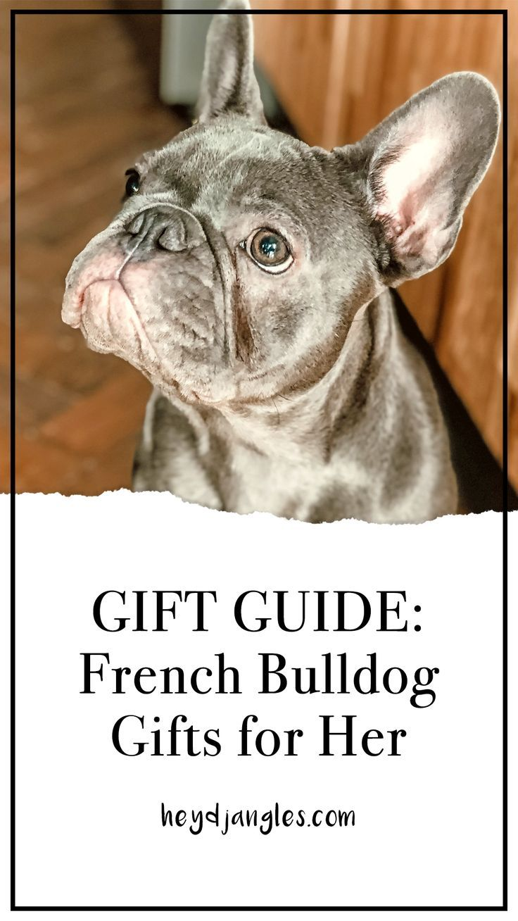 GIFT GUIDE 9 Adorable French Bulldog Gifts for Her in