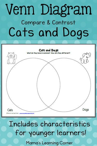 Cats and dogs venn diagram worksheet pinterest venn diagrams venn diagram compare and contrast cats and dogs includes characteristics for younger learners to sort ccuart Gallery
