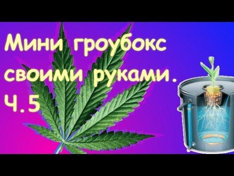 Гидропонная установка для марихуаны своими руками почему завяла конопля