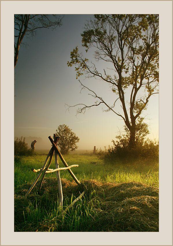 after fog | fog, people, grass, field