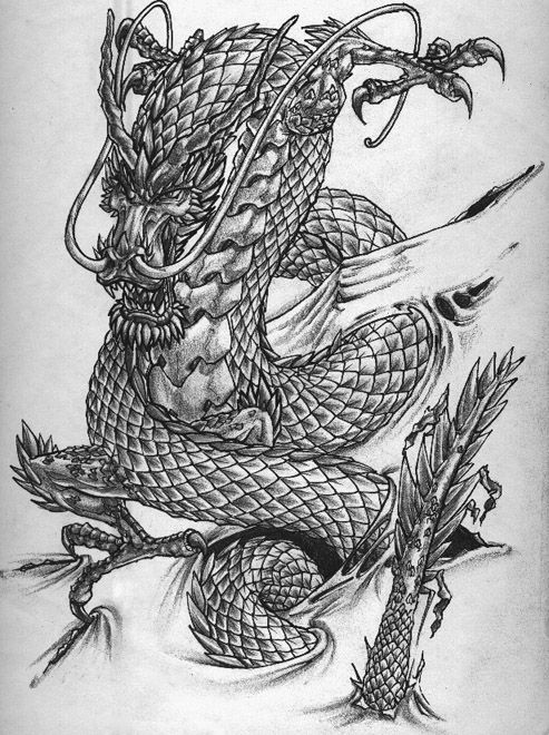 Line Drawing Dragon Tattoo : Chinese dragon drawings tattoo design by