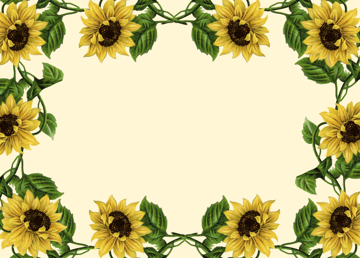 clip art borders sunflowers - photo #5